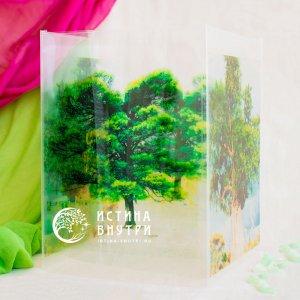 Коробка Древо Мира